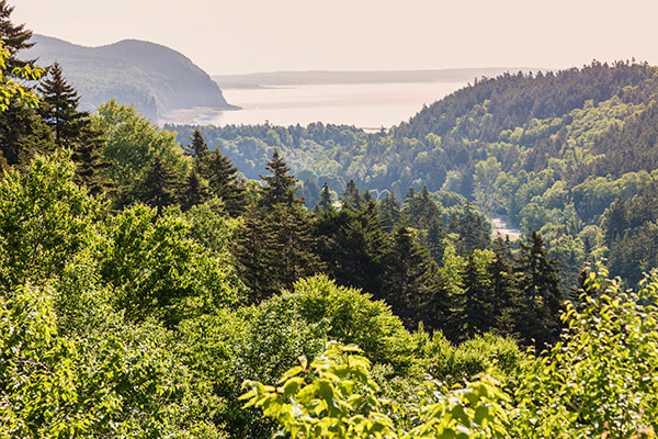 5 Day Trips Near Halifax To Explore This Summer